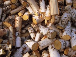 Birch logs for a traditional wood-fired sauna: frequent saunas protect men against dementia.