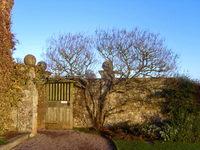 Killerton House Garden near Exeter