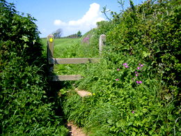 Exercising in nature: Devon offers a wealth of opportunities for outdoor exercise.