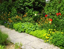 A greener front garden helps you to feel relaxed