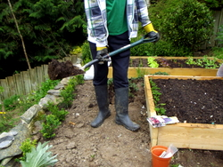 Acupuncture in Exeter for back pain: gardening can be hard on the back.